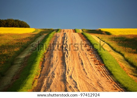 Beautiful colors along a Saskatchewan country road