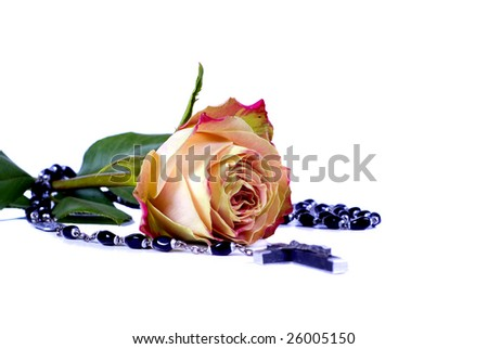 beautiful  colourful rose and a cross on white background