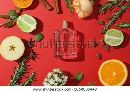 Beautiful composition with bottle of perfume on color background, flat lay