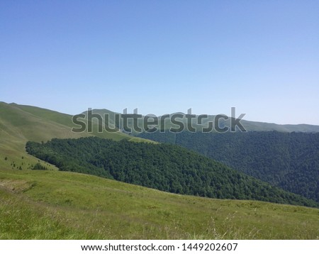 beautiful contrastis captured by me in this photo while hiking in the Carpathian Mountains #1449202607