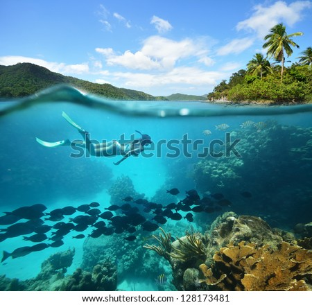 beautiful coral reef with lots...