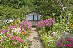 beautiful cottage garden scene with a little garden house, a path & lots of flowers and trees.