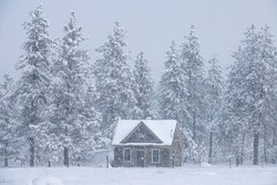 Beautiful cottage on the outskirts of a pine forest is caught in a blizzard. Wooden vacation house weather a severe snowstorms raging in the Idaho countryside. Vacation cabin in the snowy pine woods.