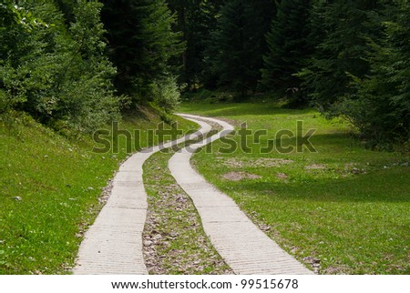 beautiful country road that runs along a forest in the mountains of Trentino