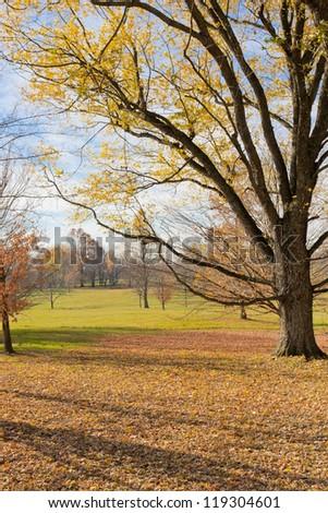 Beautiful country scenery on late autumn season.