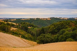 Beautiful countryside, hilly landscape of harvested corn fields, with woods in the sloping valley, in the Albigeois, a verdant agricultural area in Occitanie, South of France