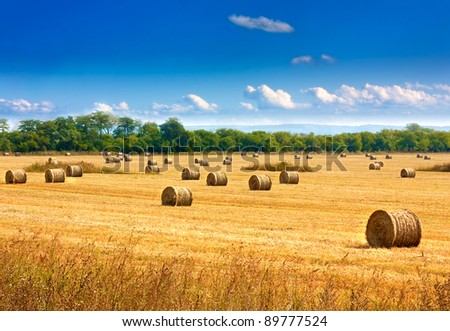 stock-photo-beautiful-countryside-landscape-round-straw-bales-in-harvested-fields-and-blue-sky-with-clouds-89777524.jpg