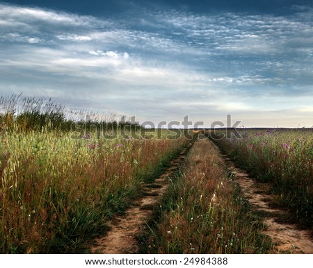 Beautiful countryside landscape with dirt tracks into horizon