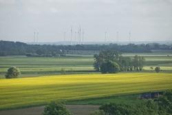 Beautiful countryside landscape with fields and windmills near Kiel - Schleswig-Holstein - Germany