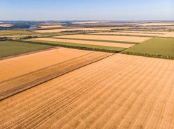 Beautiful countryside patchwork pattern of cultivated landscape from drone pov, fields of corn, soybean and wheat from high angle view