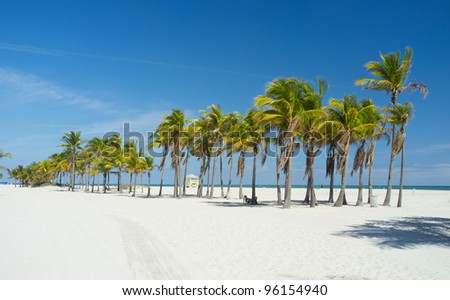Beautiful Crandon Park Beach in Key Biscayne in Miami.