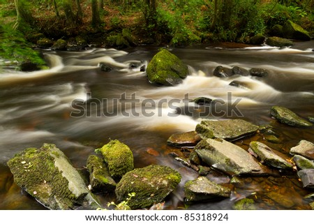 Beautiful creek of Clare Glens, Co. Limerick, Ireland