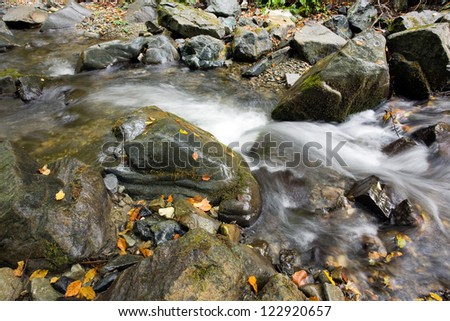 Beautiful creek the mountain at forest autumn