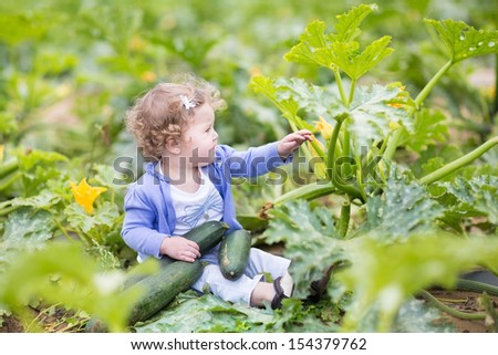 Beautiful curly baby girl sitting in a farm field next to a zucchini plant gathering ripe vegetables in autumn by nice sunny weather