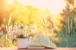 beautiful daisies in white cup, book, braided hat. summer garden. Rural Chamomile flowers in sunlight. Summer time season. copy space