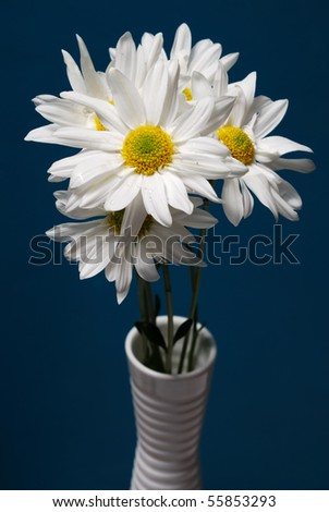 coloring pages of flowers in vase. coloring pages of flowers in vase. Flowers In Vase Images. daisy flowers in vase; Flowers In Vase Images. daisy flowers in vase on; daisy flowers in vase on