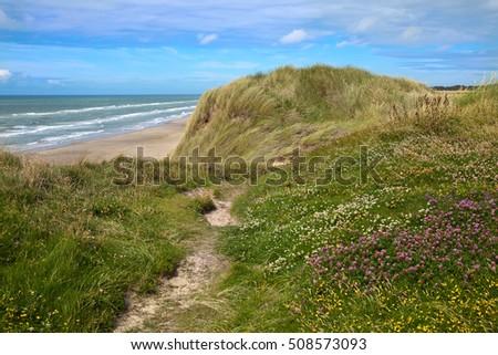 beautiful danish coastline at summer