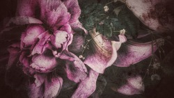 Beautiful dark themed flower bouquet. Artistic effects and filters used.