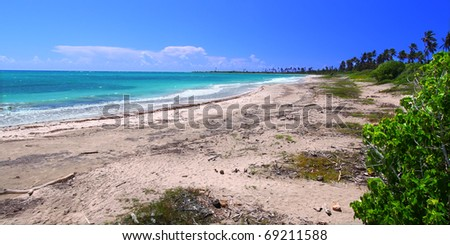 Beautiful day at the beach of Guanica Reserve in Puerto Rico