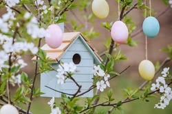 Beautiful decorative birdhouse in the branches of a blossoming apple tree