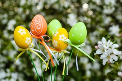 Beautiful decorative eggs of colorful yellow, orange,green color on a stick with a bow.Branches of a blooming apple tree with white flowers in the park in spring.Happy Easter!