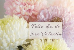 beautiful delicate bouquet of multicolored chrysanthemums with a white card with the inscription Happy Valentine's Day in spanish, concept of holiday