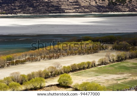 beautiful desert in tibet with crystal river and green trees