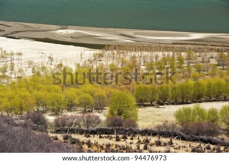 beautiful desert in tibet with green trees and crystal river