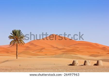 Beautiful Desert Landscape. Sahara, Morocco.