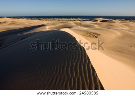 Beautiful desert taken in clear day and low light conditions. Stockton dunes in Anna Bay, NSW, Australia.