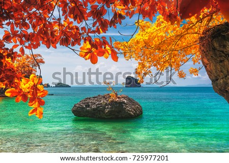 Beautiful destinations beach in colorful autumn trees, Andaman sea, Krabi province, Travel in your dream Thailand, Summer and vacation trip #725977201