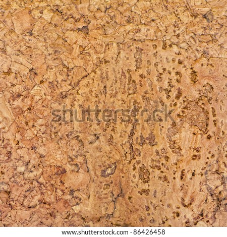 Beautiful detailed cork texture