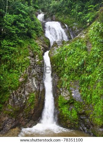 Beautiful Dona Juana Falls in the Cordillera Central rainforests of Puerto Rico