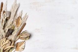 Beautiful dried flower flay lay composition of Australian native Banksia, Pampas grass, gold painted palm fronds and bulrush, on a rustic white background. Space for copy.