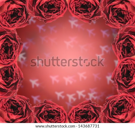 beautiful dry red rose frame on blur airplane bokeh background