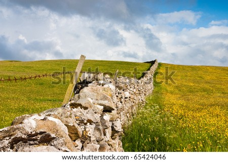 Beautiful dry stone wall on the fields near Sedbergh in Great Britain