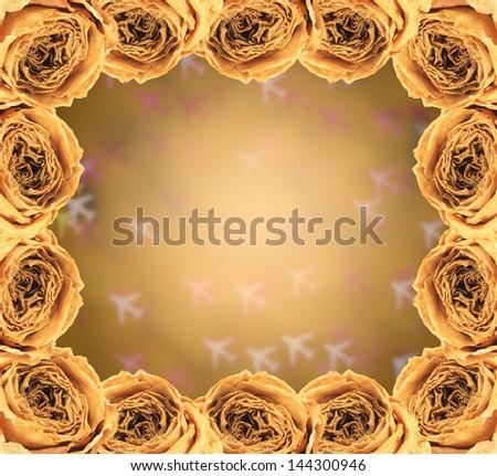 beautiful dry white rose frame on blur airplane bokeh background