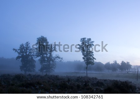 Beautiful Dutch landscape on an early morning with fog