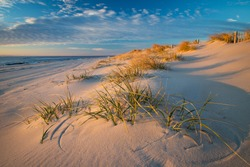 Beautiful early morning beach scene with tufts of grass amid the sand dues on Long Beach Island