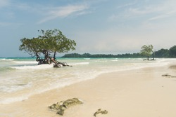 Beautiful exotic trees against the sea landscape with blue clouds and turquoise water. Uninhabited island of the Indian ocean. Clean white sand on a desert island. Andaman and Nicobar islands. India.