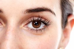 Beautiful eye close up. Isolated on white background.