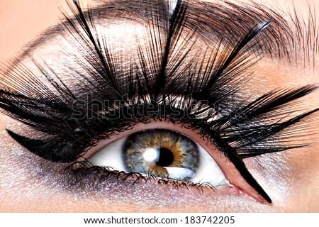 Beautiful Eye Makeup.Wellness, cosmetics and make-up. Holiday visage