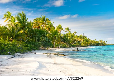 Beautiful Fakarava beach, French Polynesia - stock photo