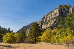 Beautiful fall color around West Fork hiking area at Sedona, Arizona