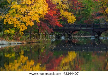 Beautiful Fall colors at Oak Bridge (Bank Rock bay), Central Park. New York City