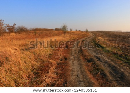 Beautiful Fall scene on curved unpaved road #1240335151
