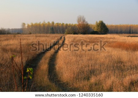 Beautiful Fall scene on curved unpaved road #1240335160