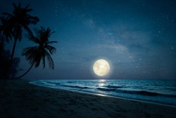 Beautiful fantasy of landscape tropical beach with silhouette palm tree in night skies and full moon - dreamlike wonder nature.