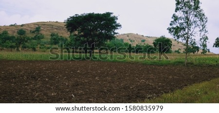 Beautiful farmland from India maharashtra #1580835979