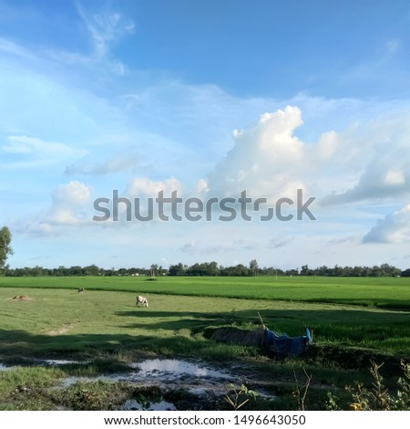 Beautiful farmland in the horizon #1496643050